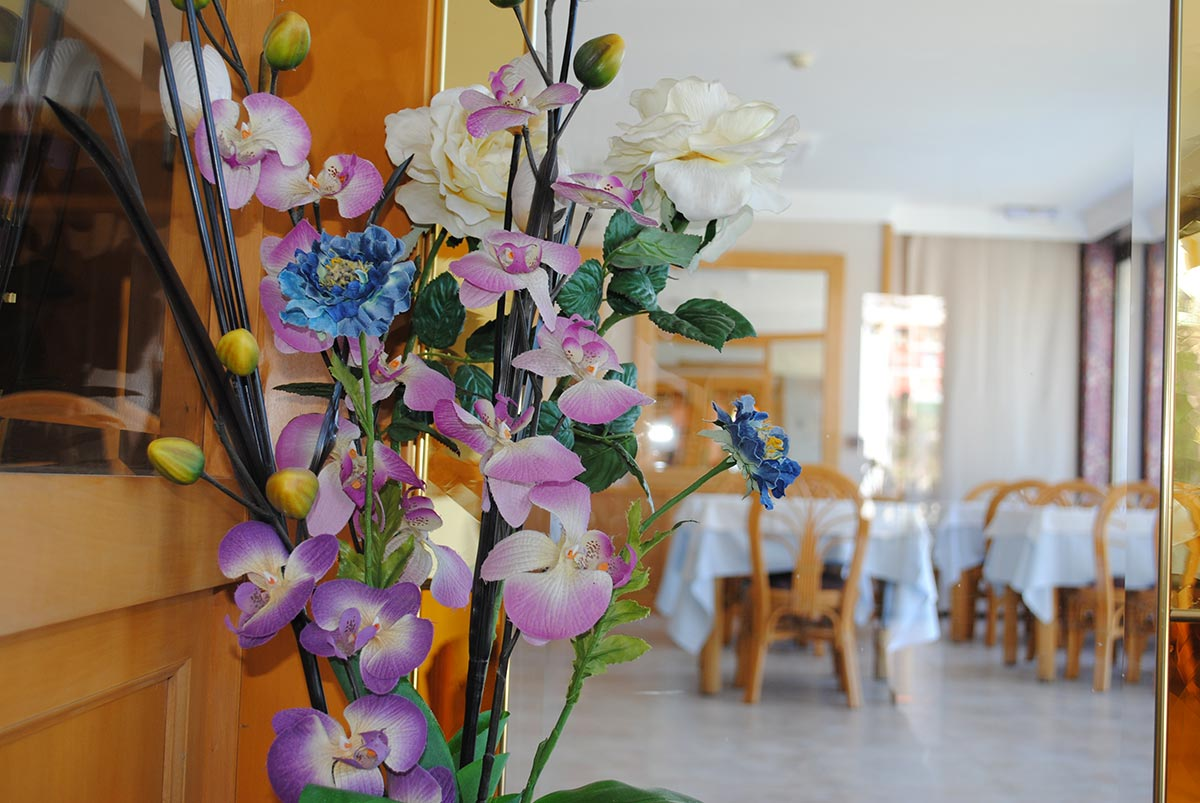 Bonsol Hotel - Restaurante - Habitación Doble- Habitación Triple - Habitación Doble con Balcón - Habitación Triple con Terraza - Lloret - Costa Brava